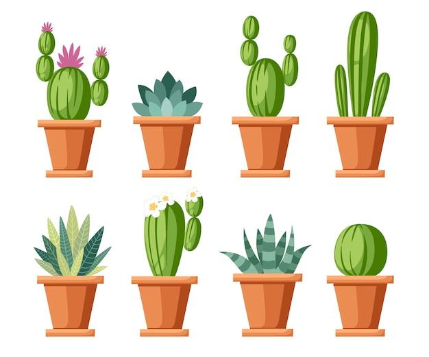 Zestaw kwiatów i ozdobnych kaktusów. domowe rośliny kaktusowe w doniczkach i kwiatach. różnorodność dekoracyjnych kwiatów. . ilustracja na białym tle.