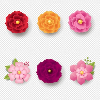 Zestaw kwiatów izolować