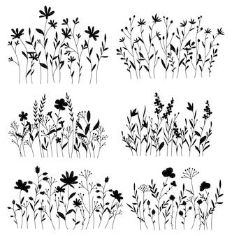 Zestaw kwiatów łąkowych. kolekcja czarne sylwetki letnich roślin.