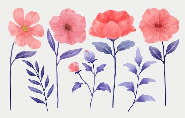 Zestaw kwiatów pomalowanych akwarelami do różnych kartek i kartek okolicznościowych.