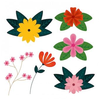 Zestaw kwiatów roślin z egzotycznymi liśćmi