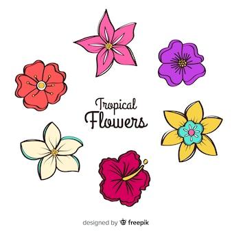 Zestaw kwiatów wyciągnąć rękę