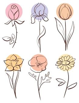 Zestaw kwiatów