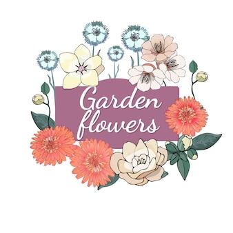 Zestaw kwiatowy. lato i wiosna pojedyncze kwiaty ogrodowe z nagietkiem, kamelią, goździkiem.