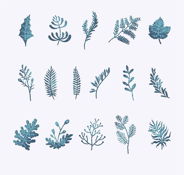 Zestaw kwiatowy zima, ręcznie rysowane styl linii z cyfrowym kolorem, ilustracji wektorowych