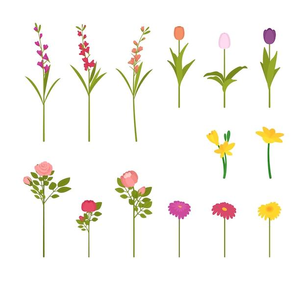Zestaw kwiaty w kwiat