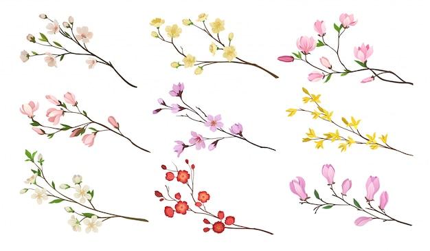 Zestaw kwitnących gałęzi drzew owocowych. gałązki z kwiatami i zielonymi liśćmi. motyw natury. szczegółowe ikony