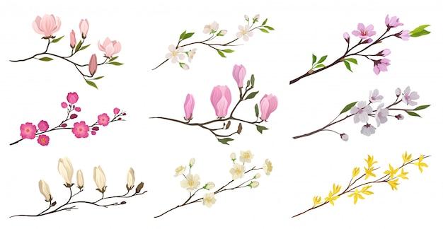 Zestaw kwitnących gałęzi z małymi kwiatami i zielonymi liśćmi. gałązki drzew owocowych. szczegółowe ikony