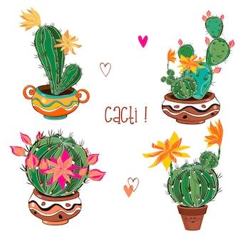 Zestaw kwitnących kaktusów w glinianych naczyniach.