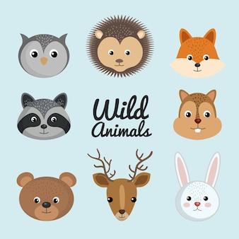Zestaw ładny dzikich zwierząt natura fauny