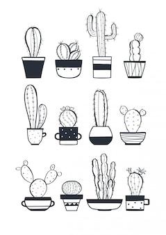 Zestaw ładny kaktus