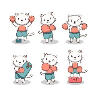 Zestaw ładny kot w stroju bokserskim