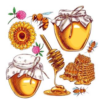 Zestaw ładny miód. słoiki z miodem, pszczoły i plaster miodu.