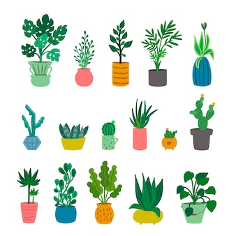Zestaw ładny ozdobnych roślin domowych na białym tle na białym tle. miejska dżungla. ogrodnictwo domowe. kolekcja modnych roślin domowych rosnących w doniczkach lub donicach. ilustracja.