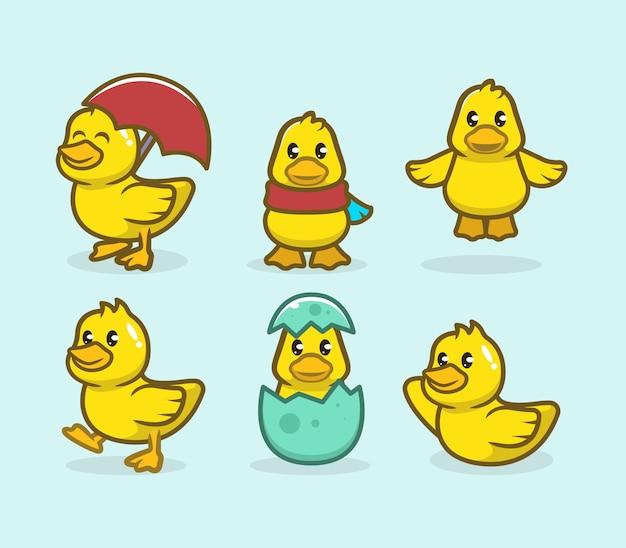 Zestaw ładny projekt maskotki kaczątko
