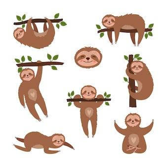 Zestaw ładny ręcznie rysowane leniwce.