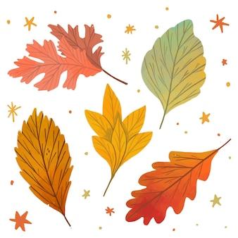 Zestaw ładny ręcznie rysowane liści