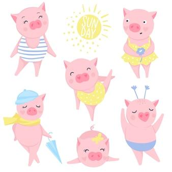 Zestaw ładny różowy świnie