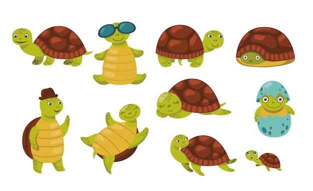 Zestaw ładny zabawny żółw