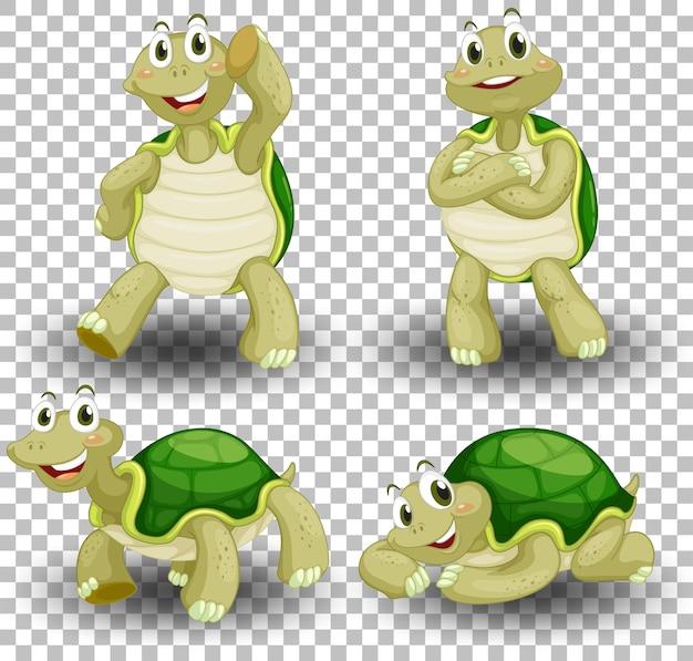 Zestaw ładny żółw na przezroczystym