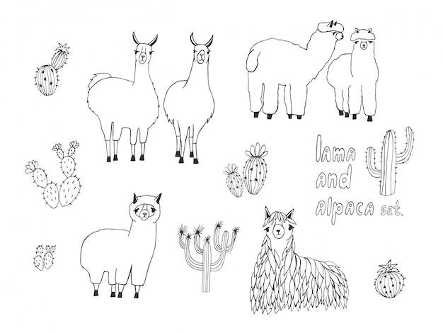 Zestaw lamy, alpaki i kaktusów. ręcznie rysowane ilustracji