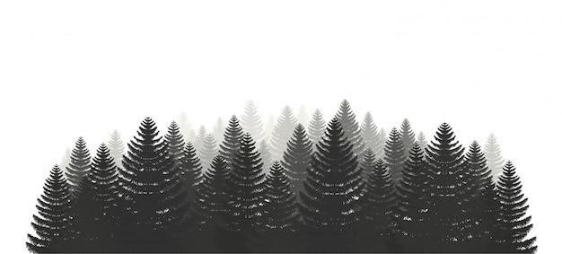 Zestaw lasów sosnowych