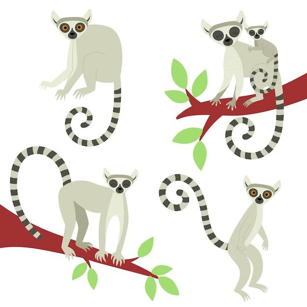 Zestaw lemurów w różnych pozach. egzotyczne słodkie zwierzęta z madagaskaru i afryki. ilustracja wektorowa w stylu płaski
