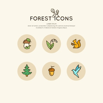 Zestaw liniowego lasu ikon i ilustracji. zwierzęta i rośliny wektorowe