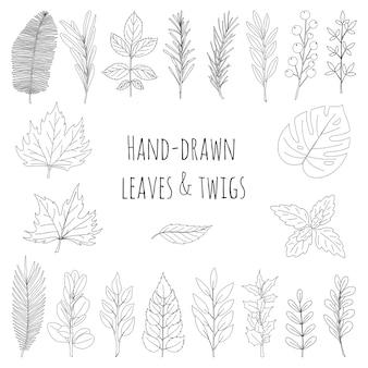 Zestaw liści i gałązek narysowanych ręcznie. botaniczne elementy dekoracyjne do projektowania artykułów, czasopism, przepisów i menu. prosta czarno-biała ilustracja wektorowa. na białym tle na białym tle.