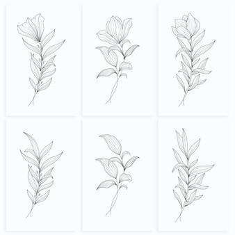 Zestaw liści kwiatowy minimalistyczny abstrakcyjna linia sztuki