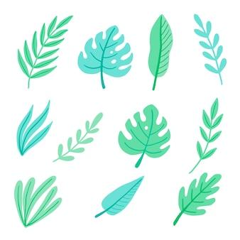 Zestaw liści tropikalnych latem. illuatration.