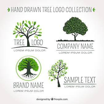 Zestaw logo drzewa w stylu wyciągnąć rękę