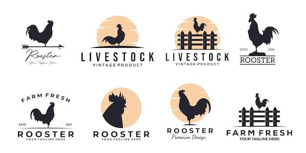 Zestaw logo koguta z kurczaka vintage wektor ilustracja projektu, projektowanie logo koguta