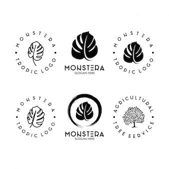 Zestaw logo liść monstera