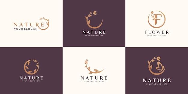 Zestaw logo róży streszczenie kwiat