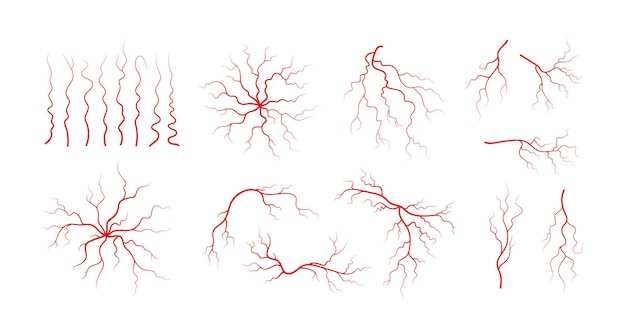 Zestaw ludzkich żył i tętnic. czerwone rozgałęzione naczynia krwionośne i naczynia włosowate. ilustracja wektorowa na białym tle.