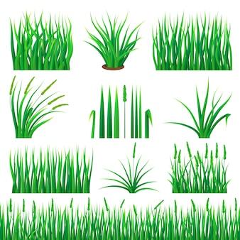 Zestaw makiet z zielonego szkła. realistyczna ilustracja 10 makiet trawy zieleni dla sieci