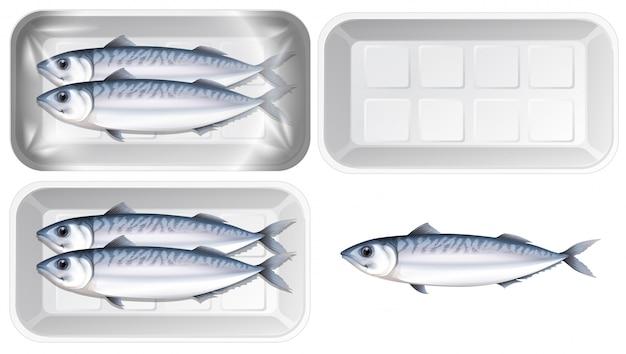 Zestaw makreli w opakowaniu