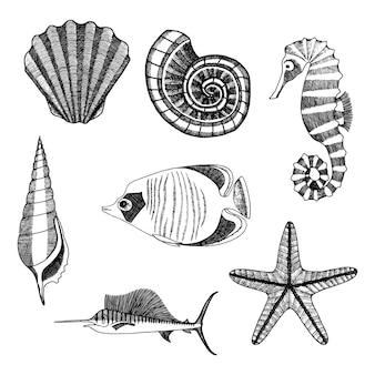 Zestaw mieszkańców morza. ręcznie rysowane szkic konika morskiego, rozgwiazdy, muszelek i ryb.