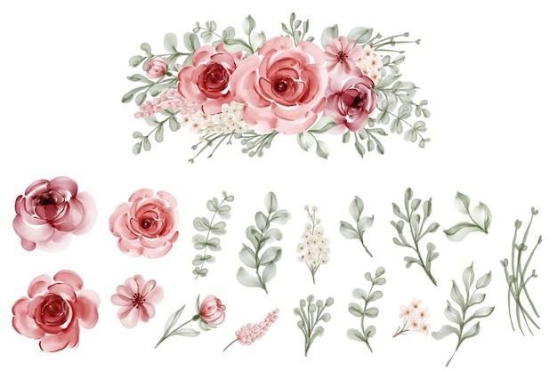 Zestaw na białym tle kwiat pozostawia kwiatowy akwarela