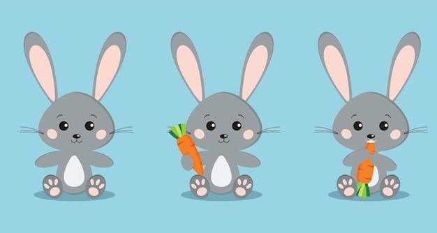 Zestaw na białym tle ładny szary królików w pozie siedzącej z marchewką w łapie, jedzenie marchewki.