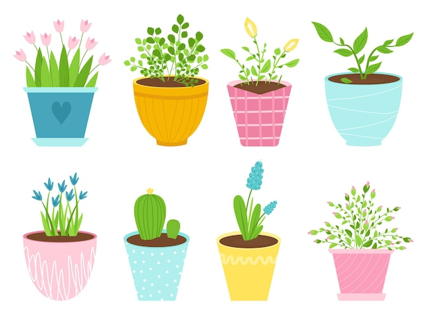 Zestaw na białym tle obrazy kwiatów w pomieszczeniach w doniczkach ceramicznych. rośliny w różnych pojemnikach. ilustracja wektorowa.