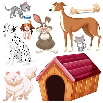 Zestaw na białym tle różnych zwierząt domowych