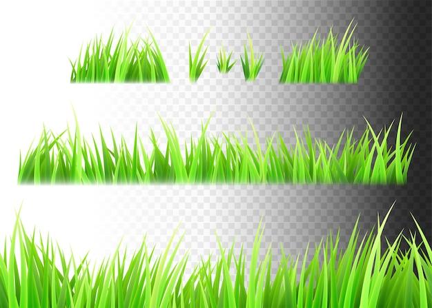 Zestaw na białym tle trawy. kępki trawy.
