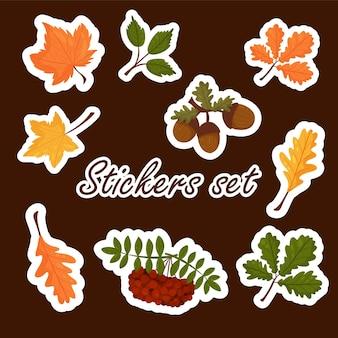 Zestaw naklejek jesiennych elementów, jasne kolorowe jesienne liście. styl kreskówki wektor. pojedynczo na białym tle