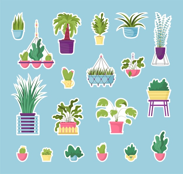 Zestaw naklejek na rośliny doniczkowe, kwiaty doniczkowe. ręcznie rysowane naturalny design