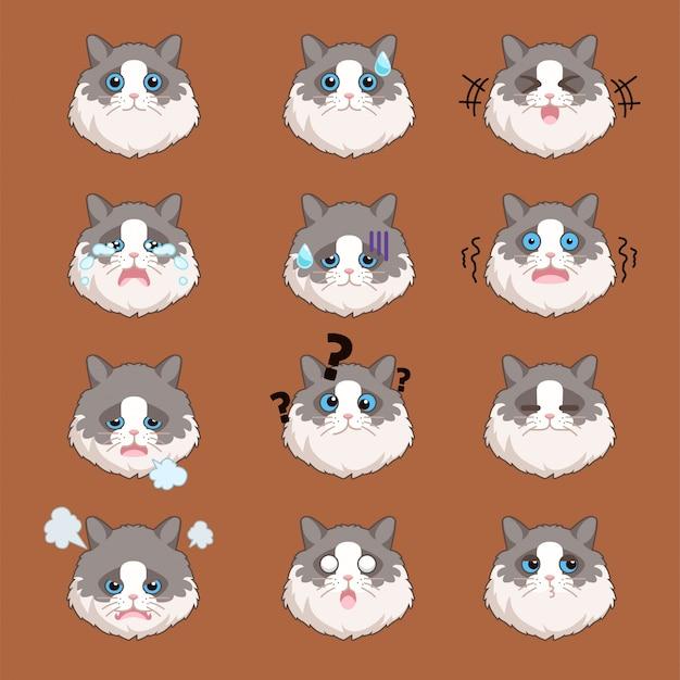 Zestaw naklejek ragdol cat