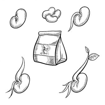 Zestaw nasion farmy ręcznie rysowane ilustracji