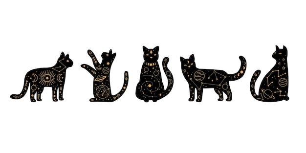 Zestaw niebiańskiej magii i astrologicznych czarnych kotów.