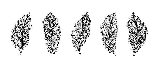 Zestaw niezrównanej dekoracyjnej ilustracji piór